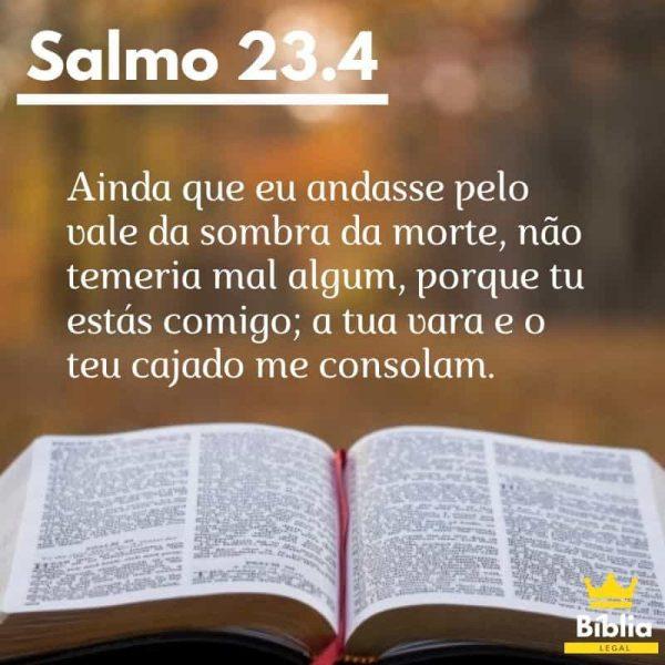 Salmo-23-Versículo-4