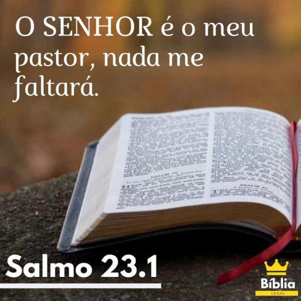 salmo 23.1 - O senhor é o meu pastor