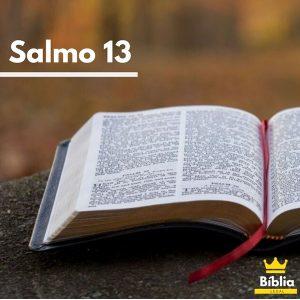Salmos 13 para ler
